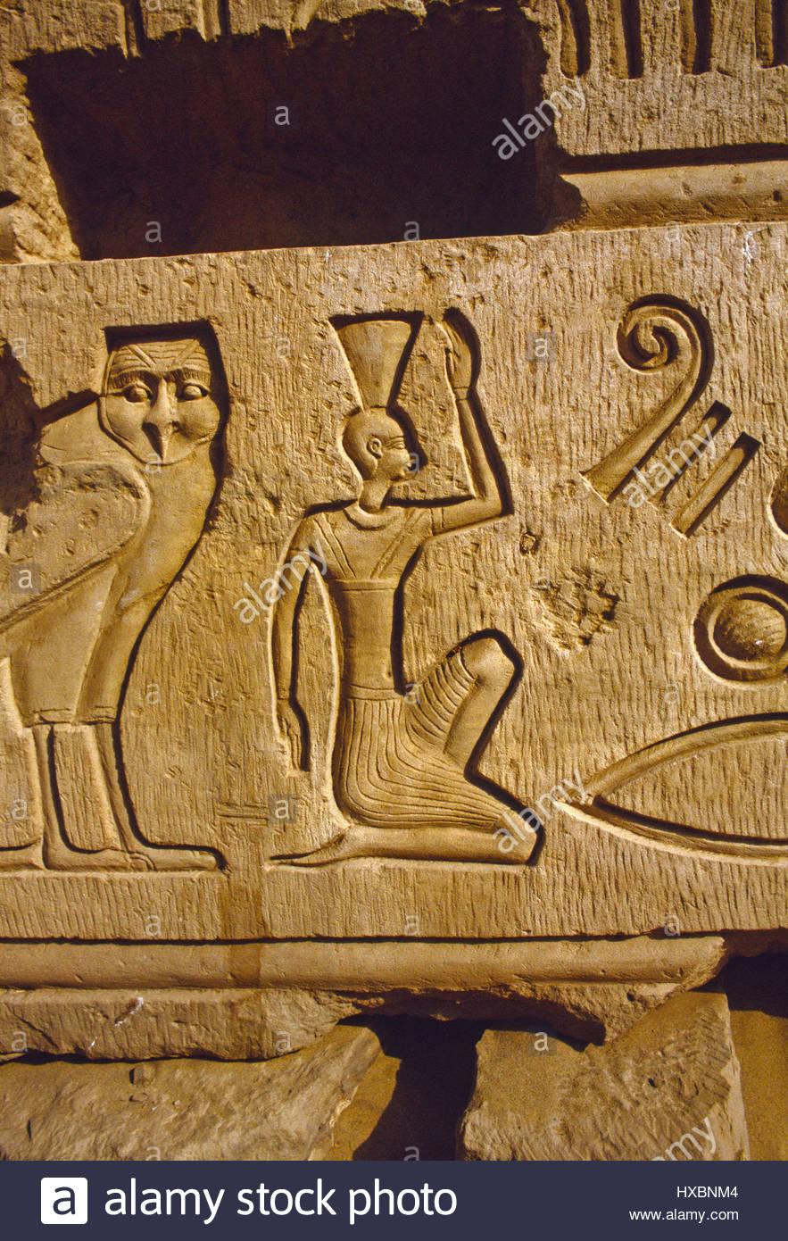 Kom ombo temple egyptian hieroglyphics carvings clear symbols owl kom ombo temple egyptian hieroglyphics carvings clear symbols owl woman seated of this beautiful ruined temple biocorpaavc