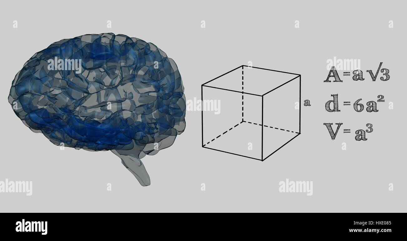 Digital composite of blue brain and black math graphics against grey digital composite of blue brain and black math graphics against grey background ccuart Image collections
