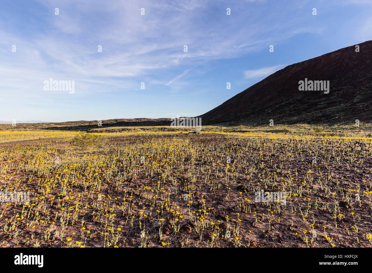 Amboy California Desert Mojave Stock Photos \u0026 Amboy California ...