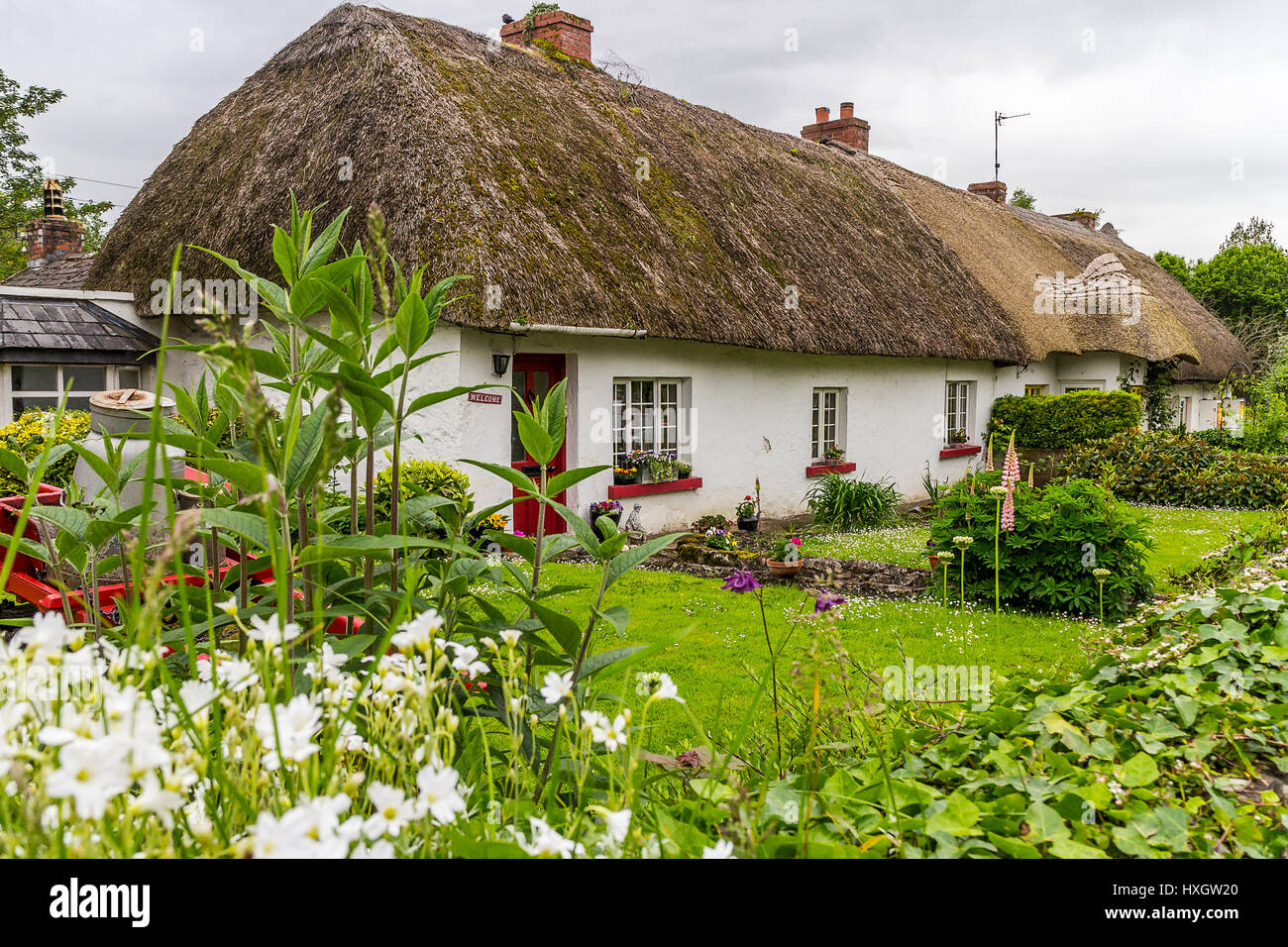 thatched cottage in village adare county limerick. Black Bedroom Furniture Sets. Home Design Ideas
