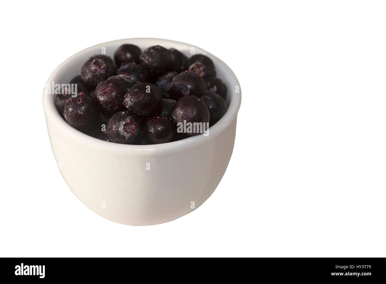 small bowl of saskatoon berries june berries a traditional