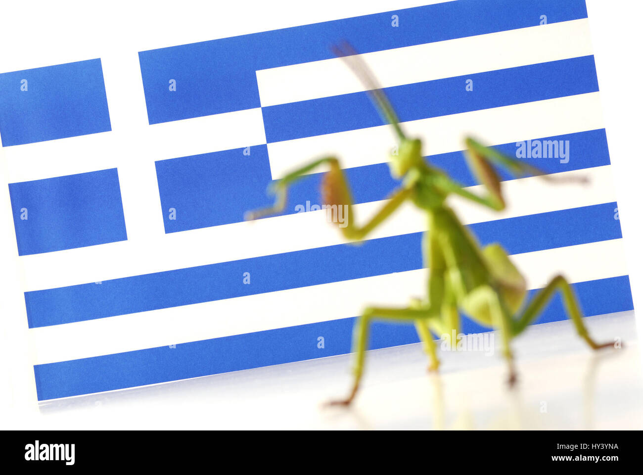 Grasshopper as a symbol of Hedge fund before a flag of Greece