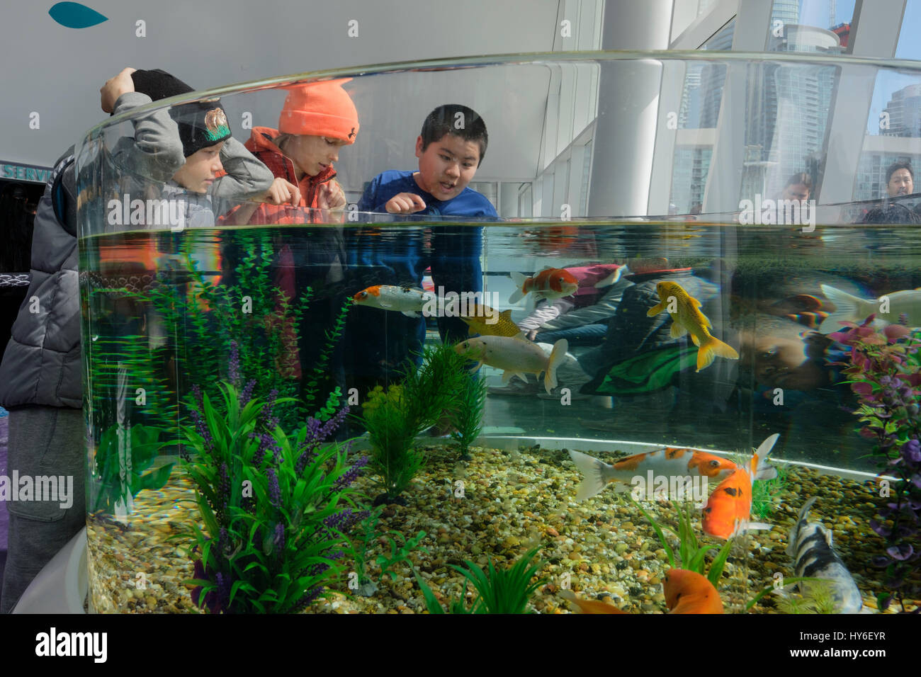 Fish aquarium in canada - Ripley S Aquarium Of Canada Kids Children Observing A Water Tank Aquarium With