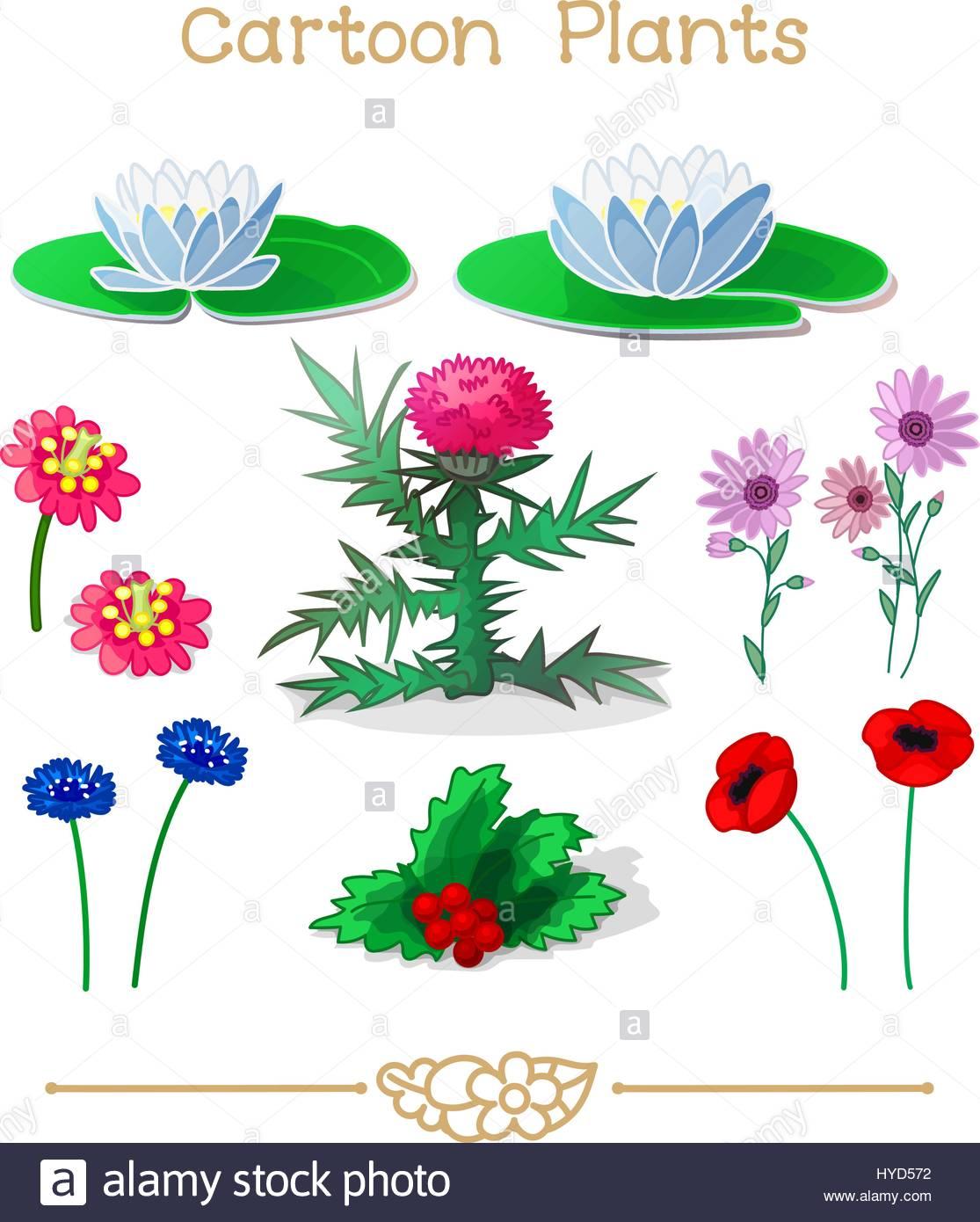 plantae series cartoon plants flowers set stock vector art