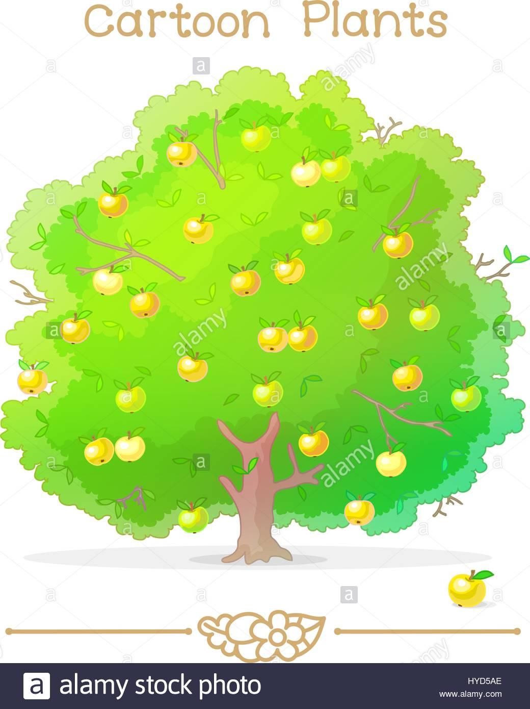 plantae series cartoon plants apple tree full of apples stock