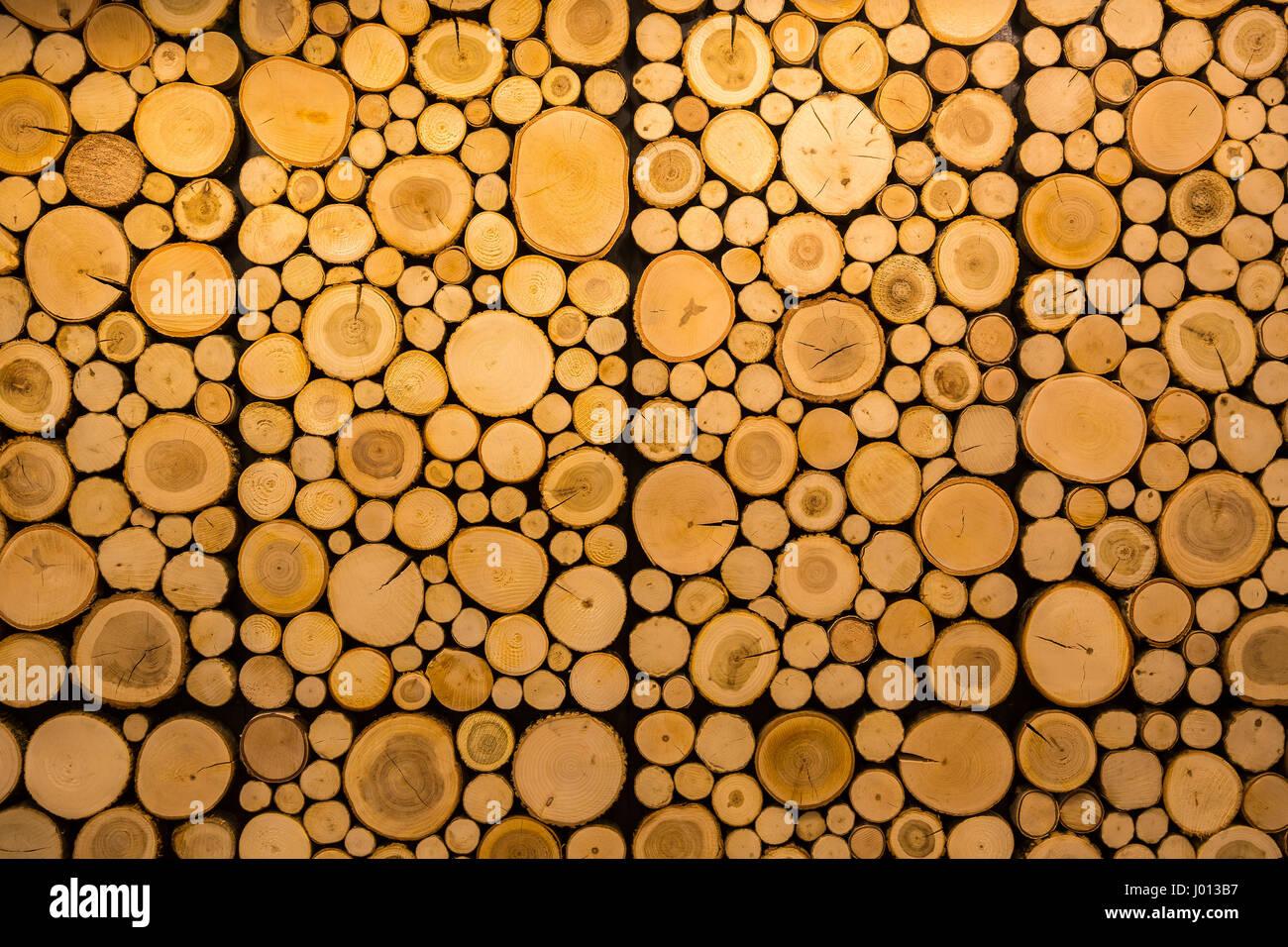 Decorative Tree Rings