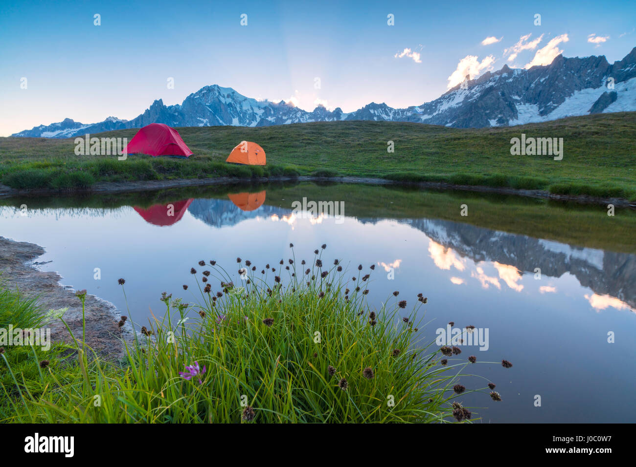 C&ing tents in the green meadows surrounded by flowers and alpine lake Mont De La Saxe Courmayeur Aosta Valley Italy & Camping tents in the green meadows surrounded by flowers and ...