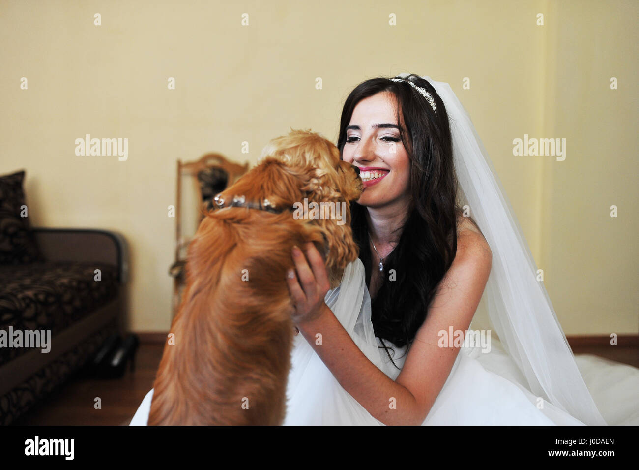 Beautiful Smiling Brunette Bride At Wedding Dress Room With Funny Cocker Spaniel Dog