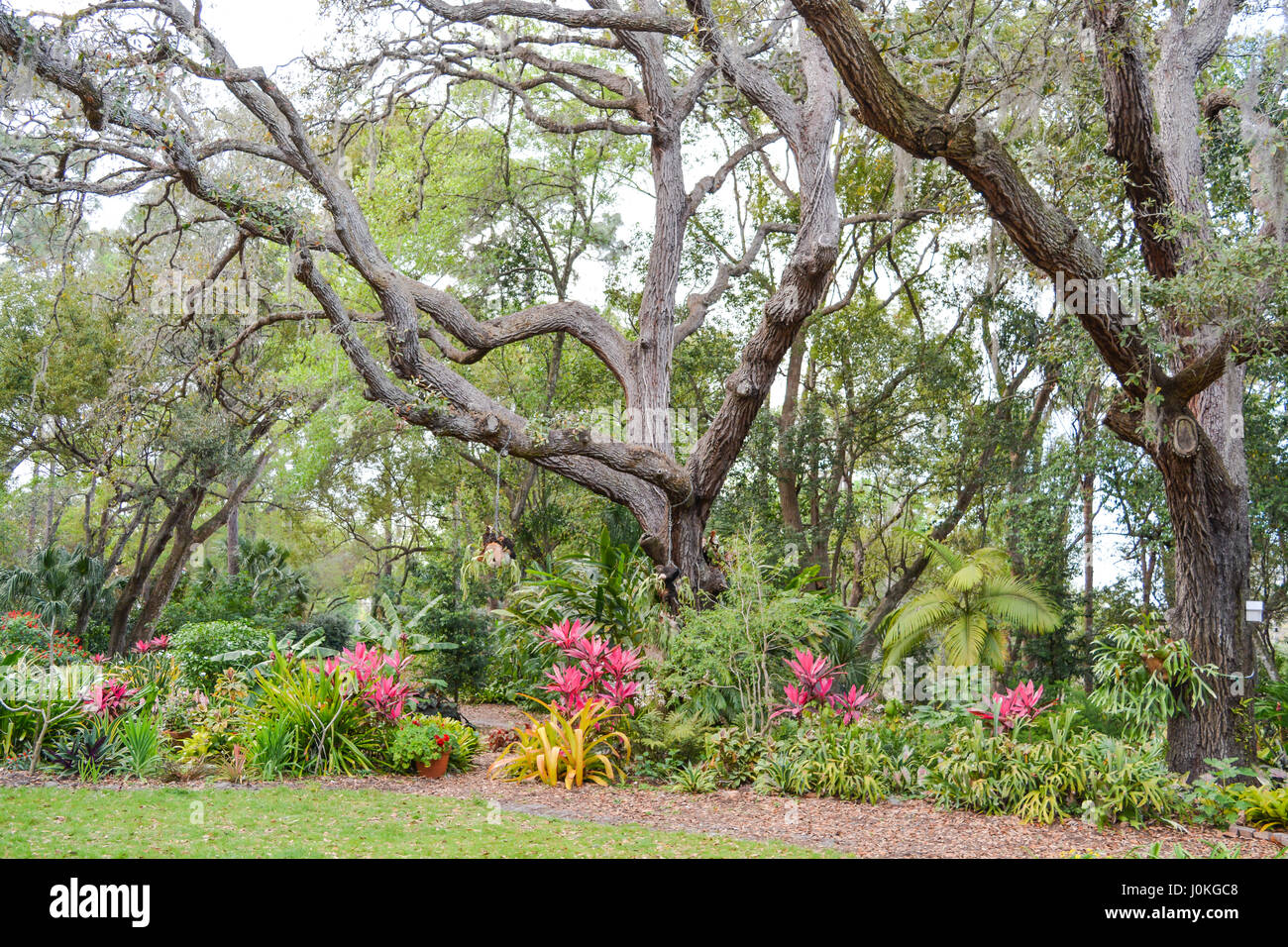 A Beautiful Garden And Landscape At Mead Botanical Gardens In Winter Park,  Orlando, Orange County, Florida