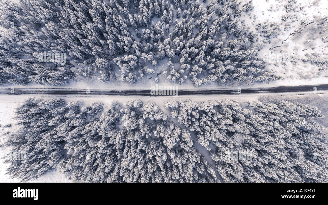 Aerial View Of A Road In Idyllic Winter Landscape Shoot With Drone
