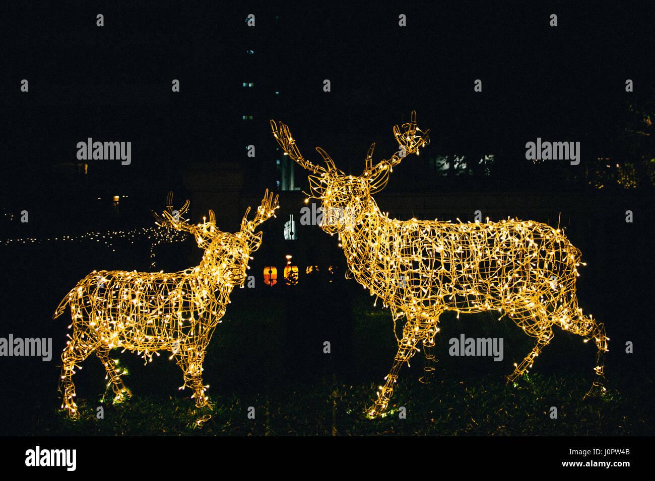 christmas lights reindeer deer illuminated decorations in a garden - Deer Christmas Lights