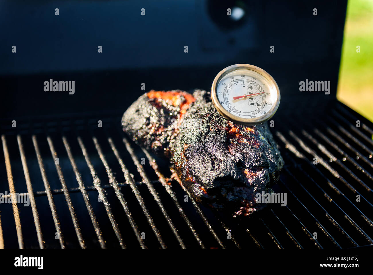 Family Backyard Barbecue   BBQ Picnic. Checking The Correct Temperature  With Meat Thermometer