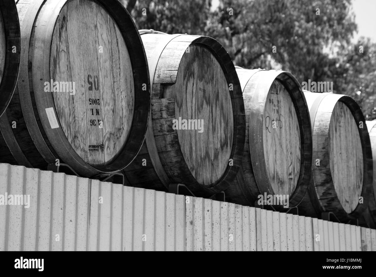stacked oak wine barrels. A Stack And Row Of Aged Oak Wood Cask Barrels For Wine Storage Outdoors Stacked