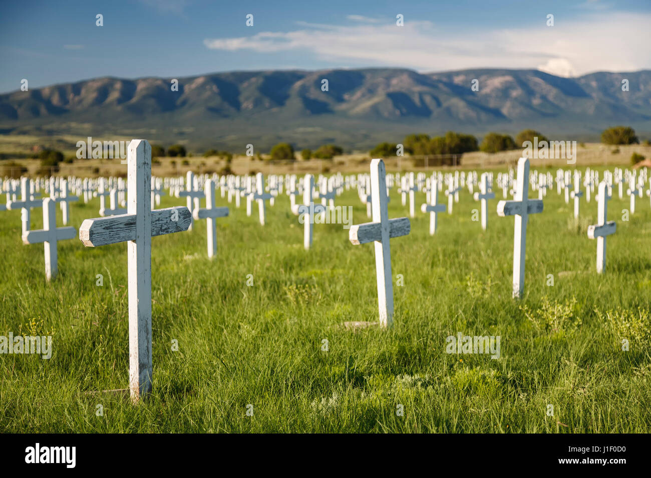 Crosses fort stanton merchant marine military cemetery fort stanton new mexico usa