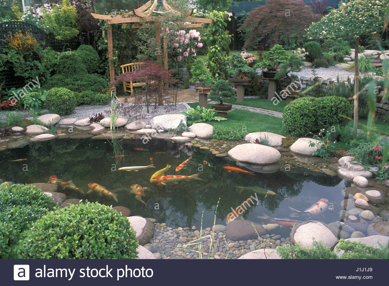 japanese style garden pool with koi carp patio covered by pergola chelsea 2002 wonderful world of koi designer rday and shickling bonsais rhododendrons