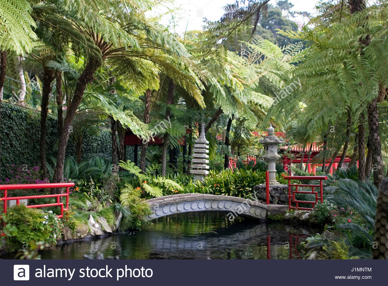 monte palace tropical garden view of koi lake in japanese garden funchal madeira