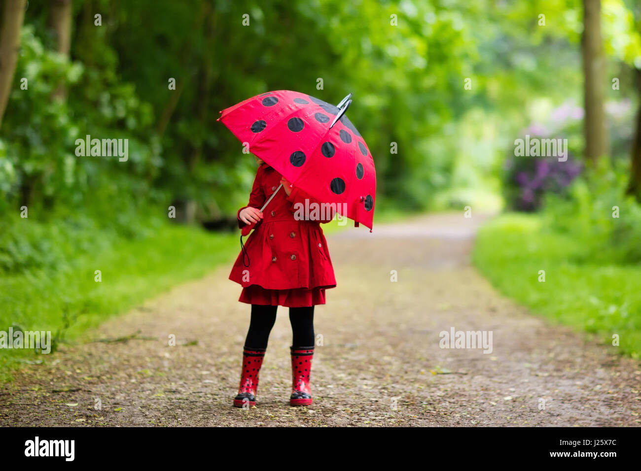 little playing in rainy summer park child with red ladybug
