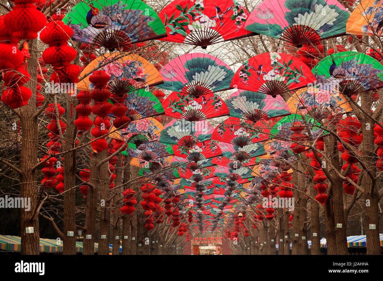 paper fans lucky red lanterns chinese new year decorations ditan park beijing china - How Long Is Chinese New Year