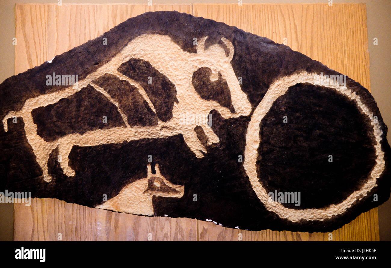 Ute petroglyph rock art carving of a buffalo horse and hoop symbols ute petroglyph rock art carving of a buffalo horse and hoop symbols vernal utah biocorpaavc Image collections