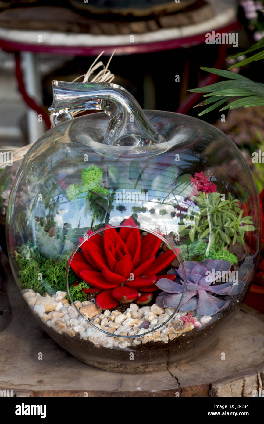 The glass flower pot with beautiful fake flowers in it stock photo the glass flower pot with beautiful fake flowers in it izmirmasajfo Choice Image
