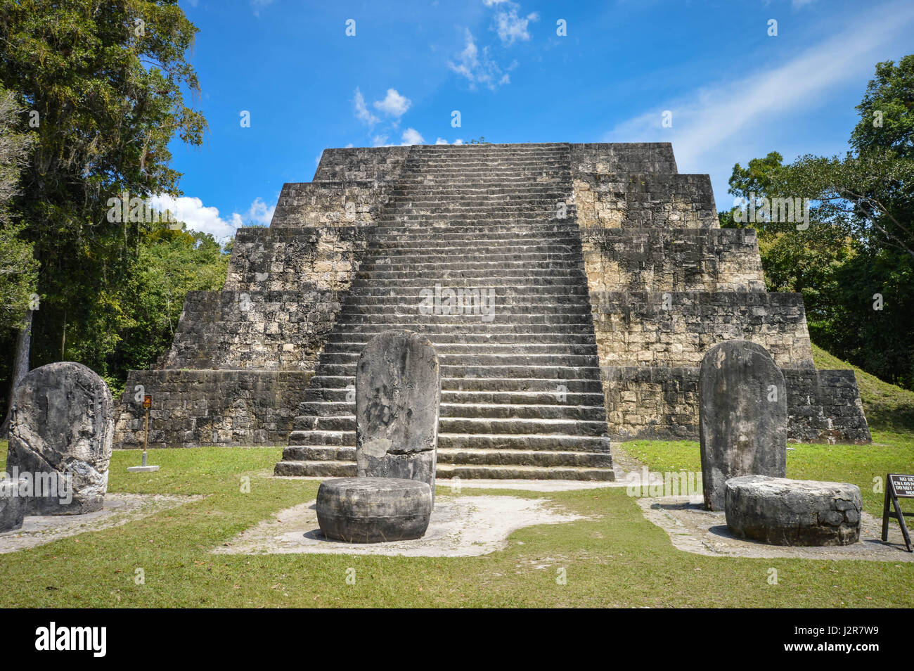 One of the twin pyramids of the Complex Q and numerous stellae in Tikal  National Park and archaeological site, Guatemala. Central America