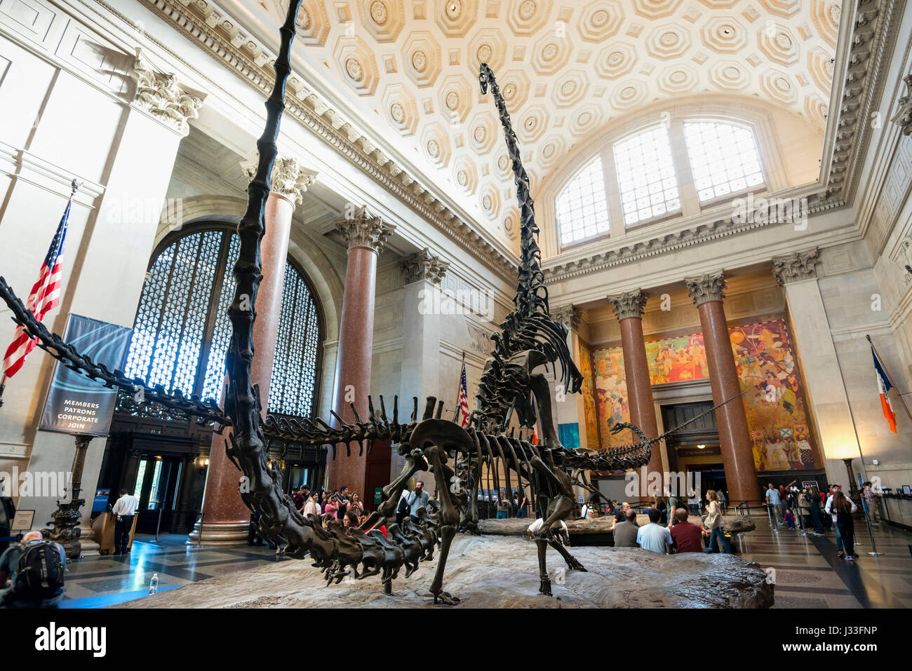 Museum Of Natural History To Central Park