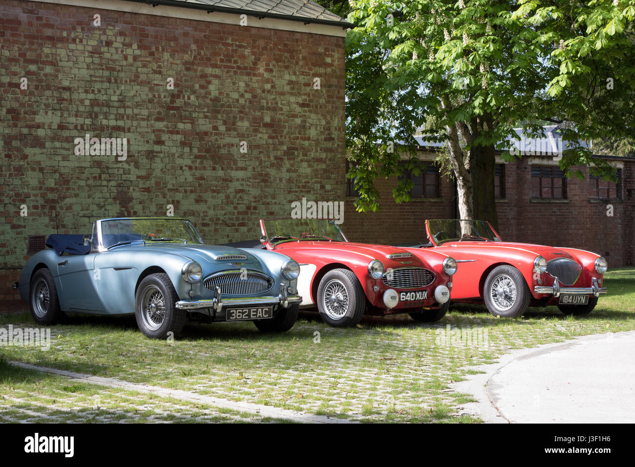 Vintage austin healey cars at Bicester Heritage Centre. Oxfordshire ...