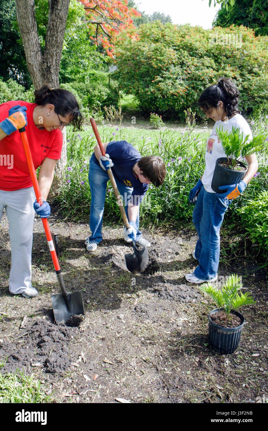 Miami Florida Little Haiti Neighborhoods In Bloom Butterfly Garden  Volunteer Residents Community Service Improvement Teamwork Pl