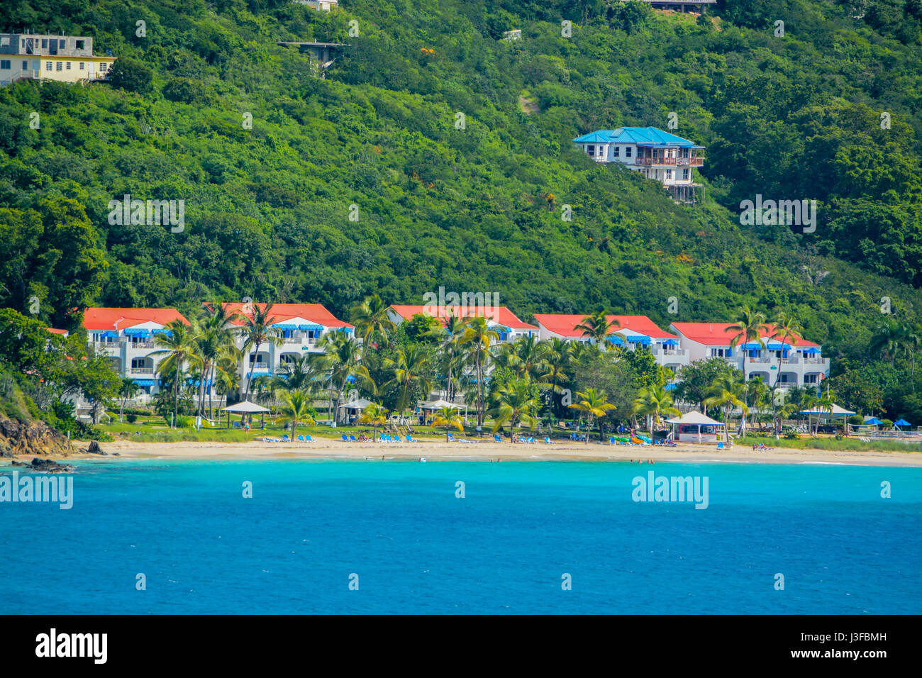 What To Buy In St Thomas Virgin Islands