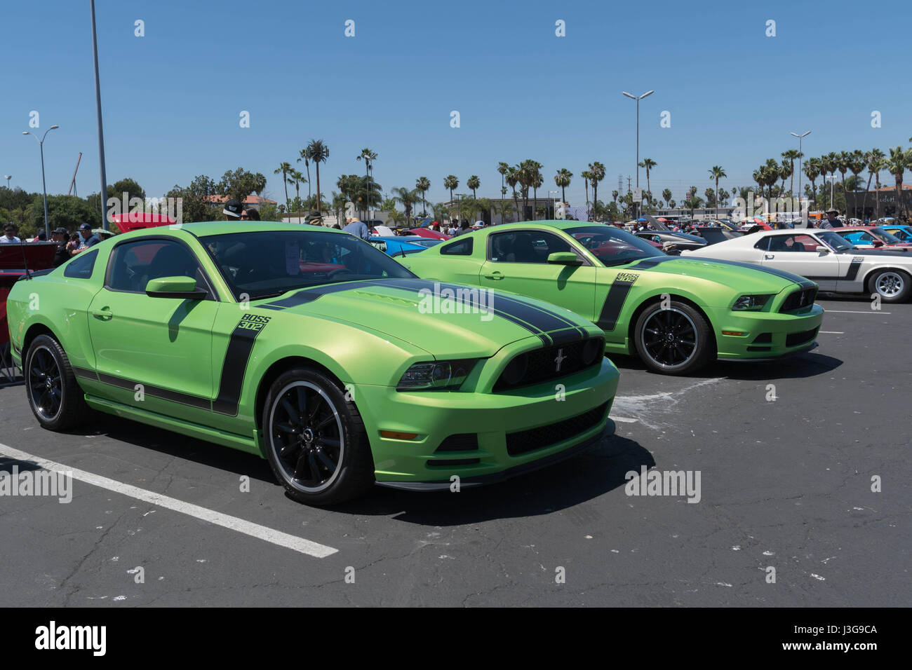 Buena park usa april 30 2017 ford mustang boss 302 fifth generation on display during the fabulous fords forever