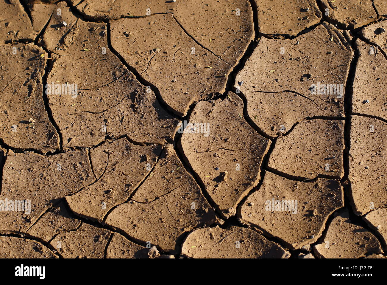 Wet surface soil dry and crack with the heat of the sun making mud stock photo wet surface soil dry and crack with the heat of the sun making mud flakes sciox Images