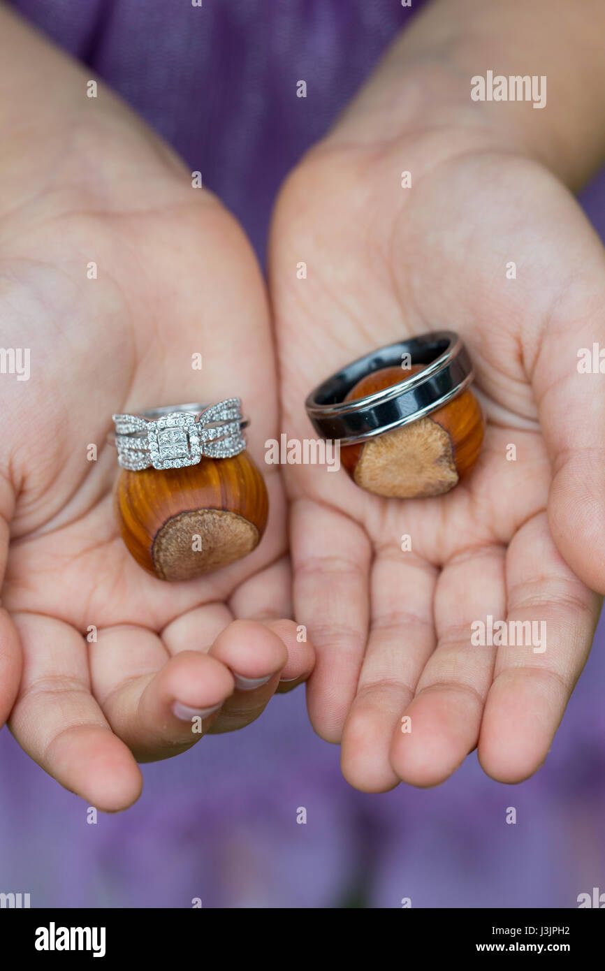 Ring Bearer with Wedding Rings Stock Photo, Royalty Free Image ...