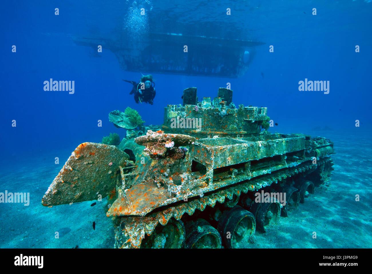 Glass bottom boat at sunken tank next to dive site seven for Aqaba dive