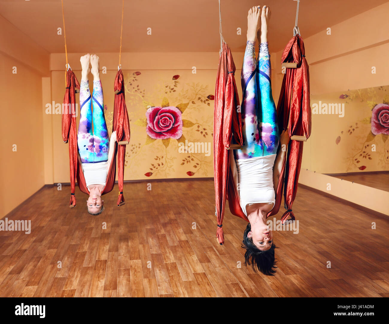 two young woman doing antigravity yoga in hammock at wellness studio with rose on the wall two young woman doing antigravity yoga in hammock at wellness      rh   alamy