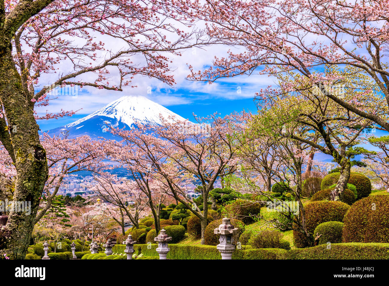 gotemba city japan at peace park with mt fuji in spring season