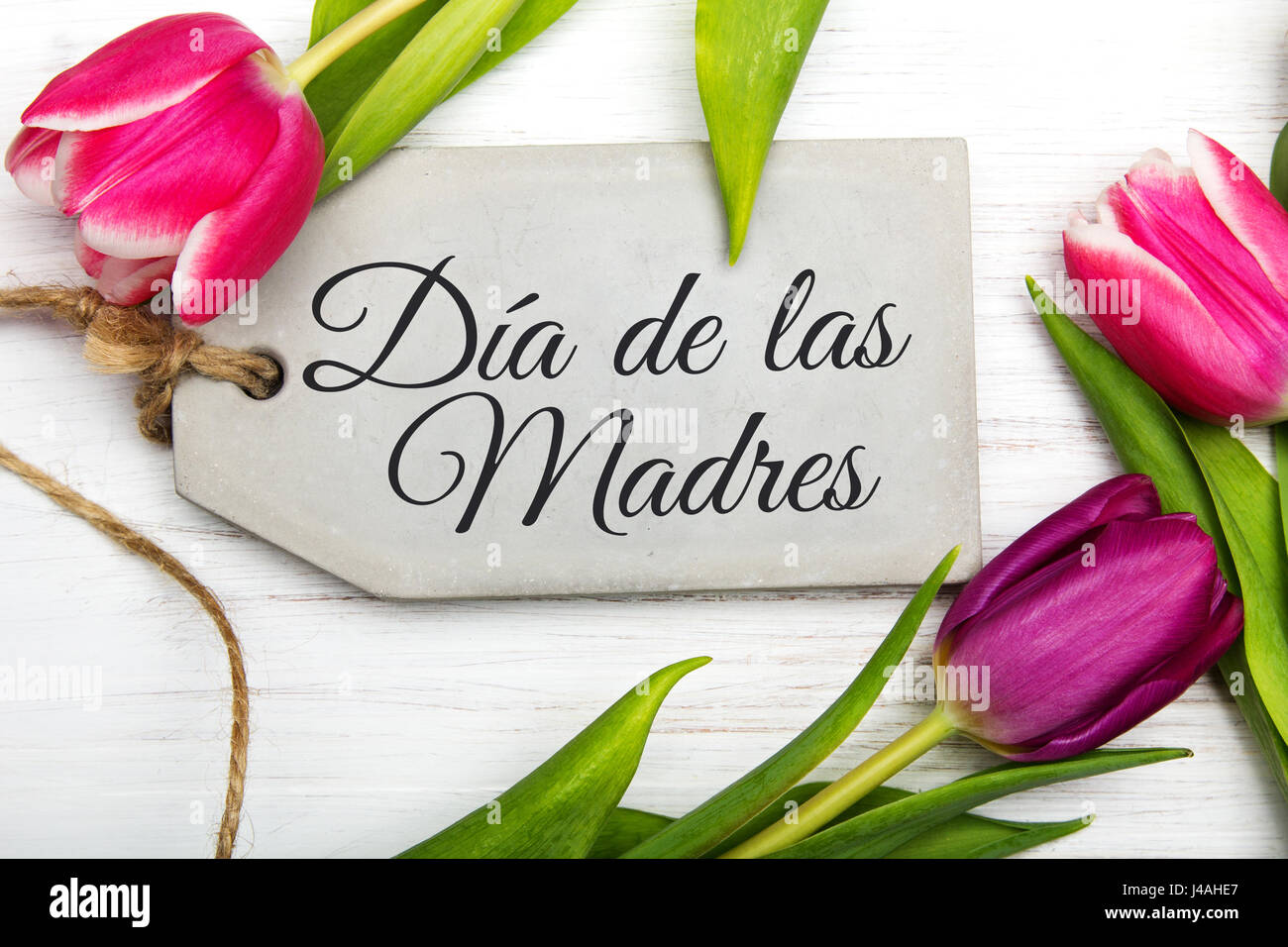 Mothers day card with spanish words happy mothers day and mothers day card with spanish words happy mothers day and tulip flowers frame on white wooden background kristyandbryce Choice Image