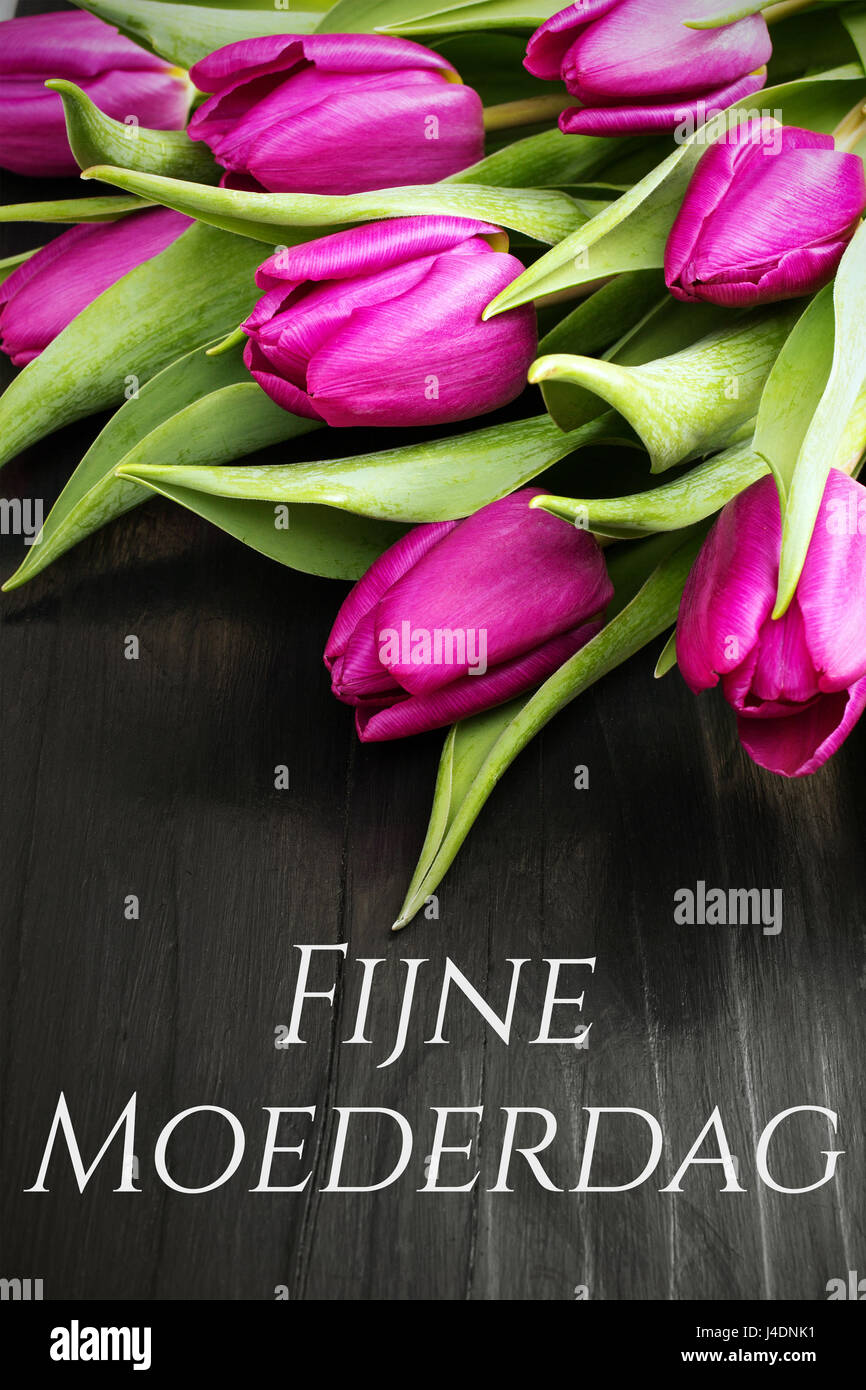 Mothers day card with dutch words happy mothers day and tulip mothers day card with dutch words happy mothers day and tulip bouquet on black wooden background kristyandbryce Choice Image