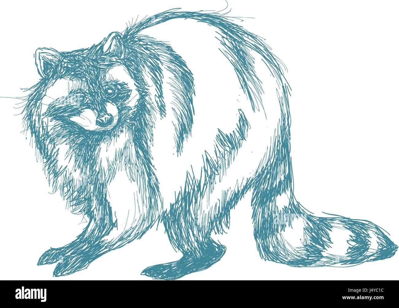 illustration engraving sketch stock photos u0026 illustration