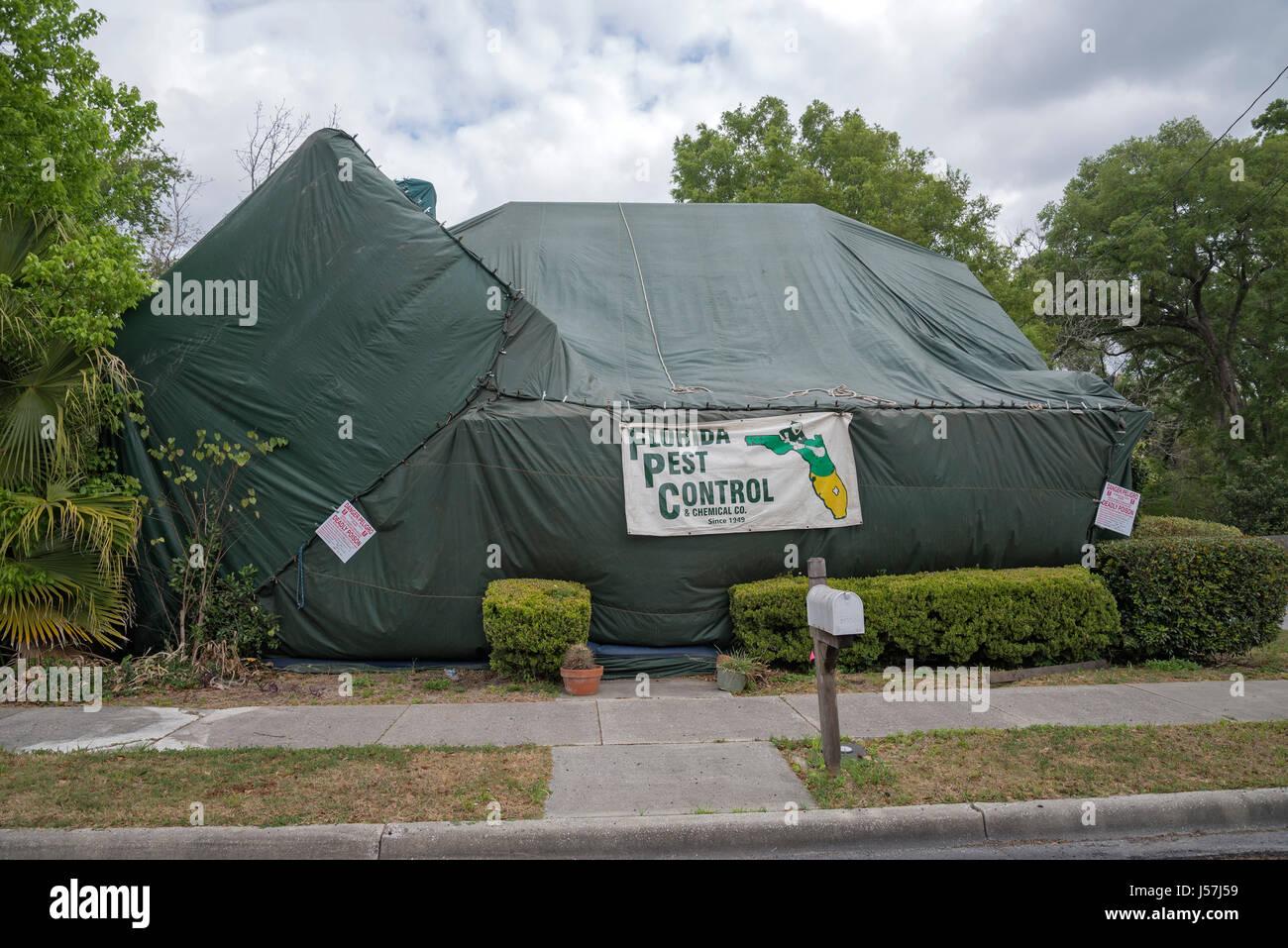 Tent fumigation of home & Tent fumigation of home Stock Photo Royalty Free Image: 140924149 ...