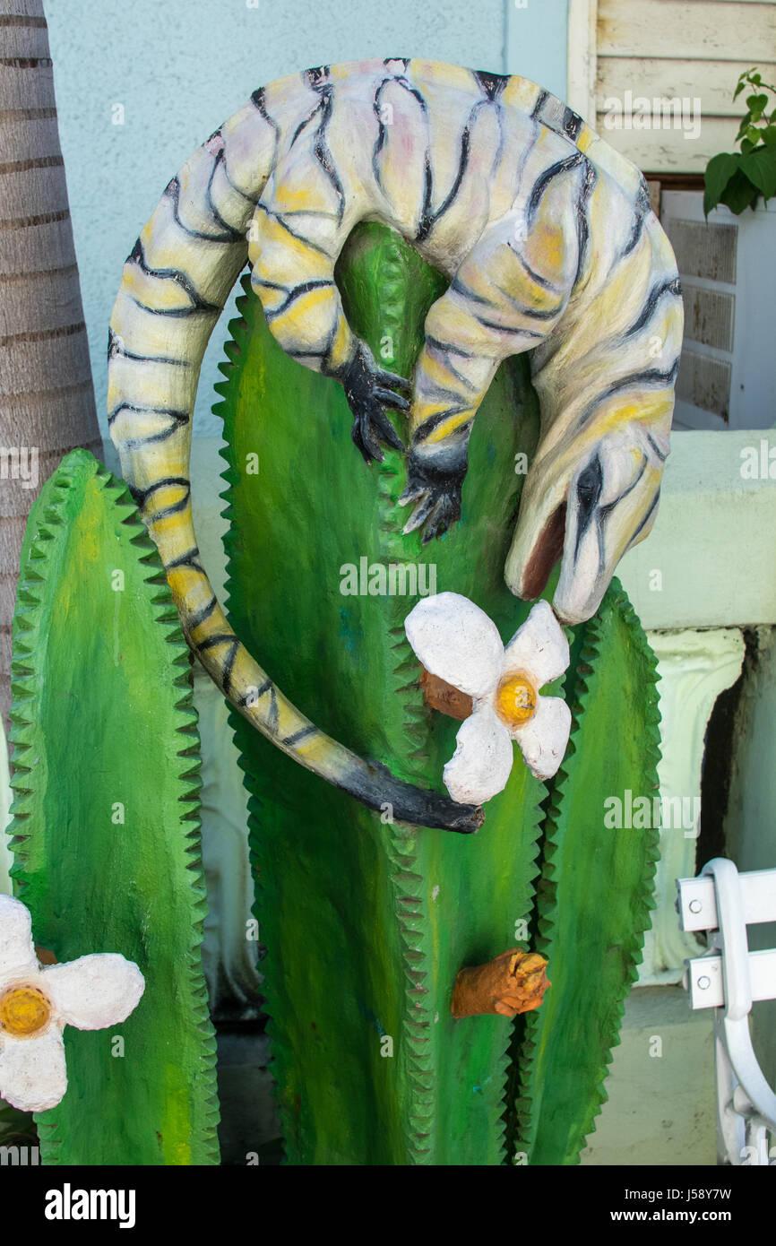 iguana cuba stock photos u0026 iguana cuba stock images alamy