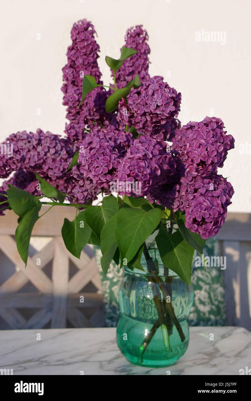 Bouquet Mediterran Lilac Table Cushion Vase Fliederstrau Gartenstrau