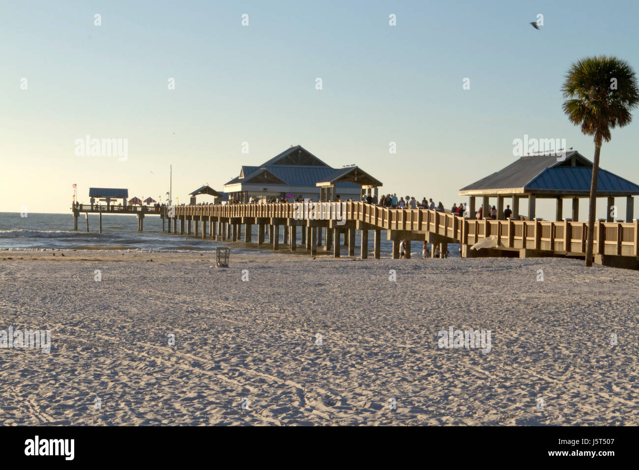 Pier 60 florida stock photos pier 60 florida stock for Clearwater beach fishing