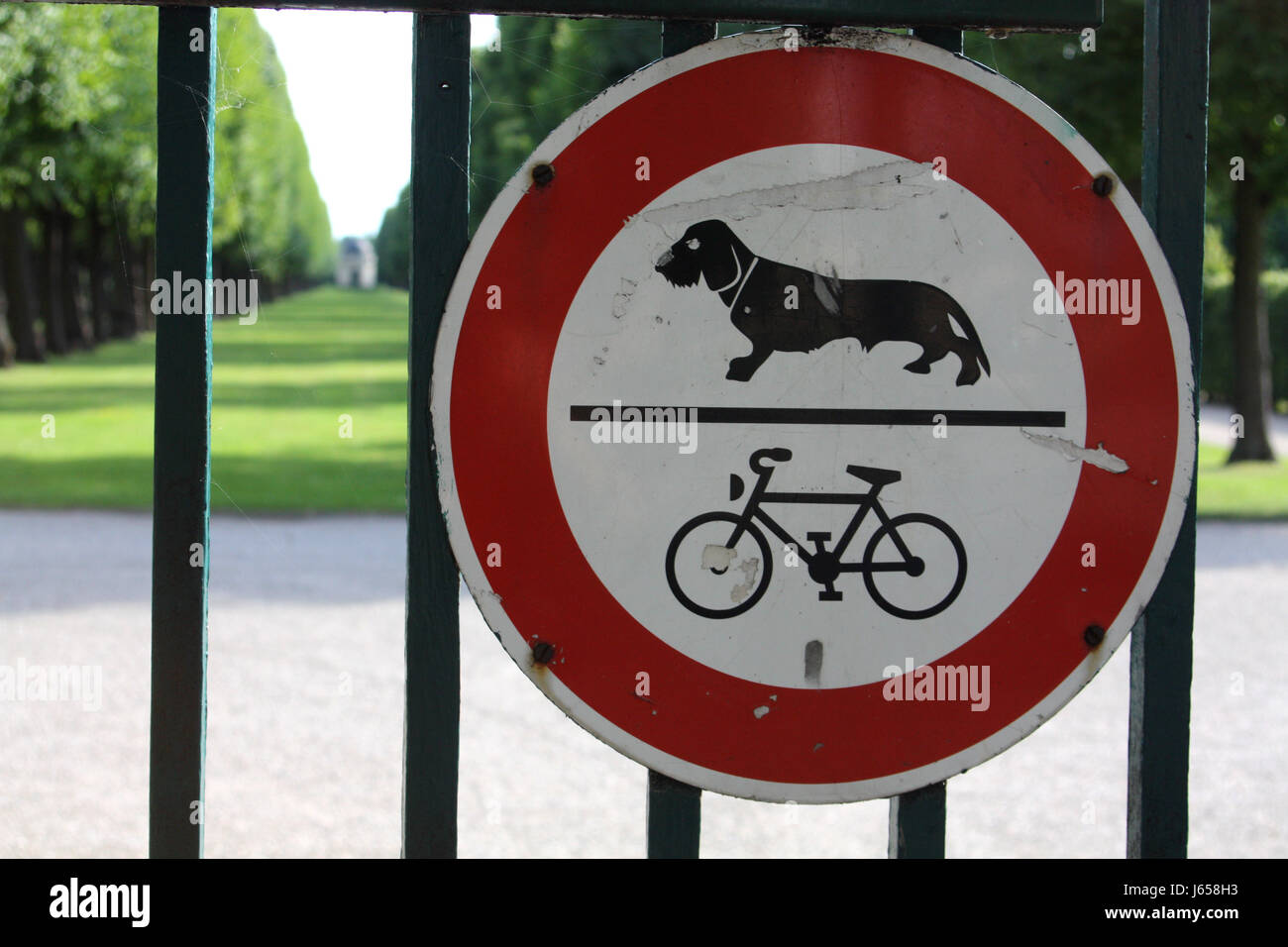 Dog And Bike Ban Stock Photo Royalty Free Image 141487391 Alamy