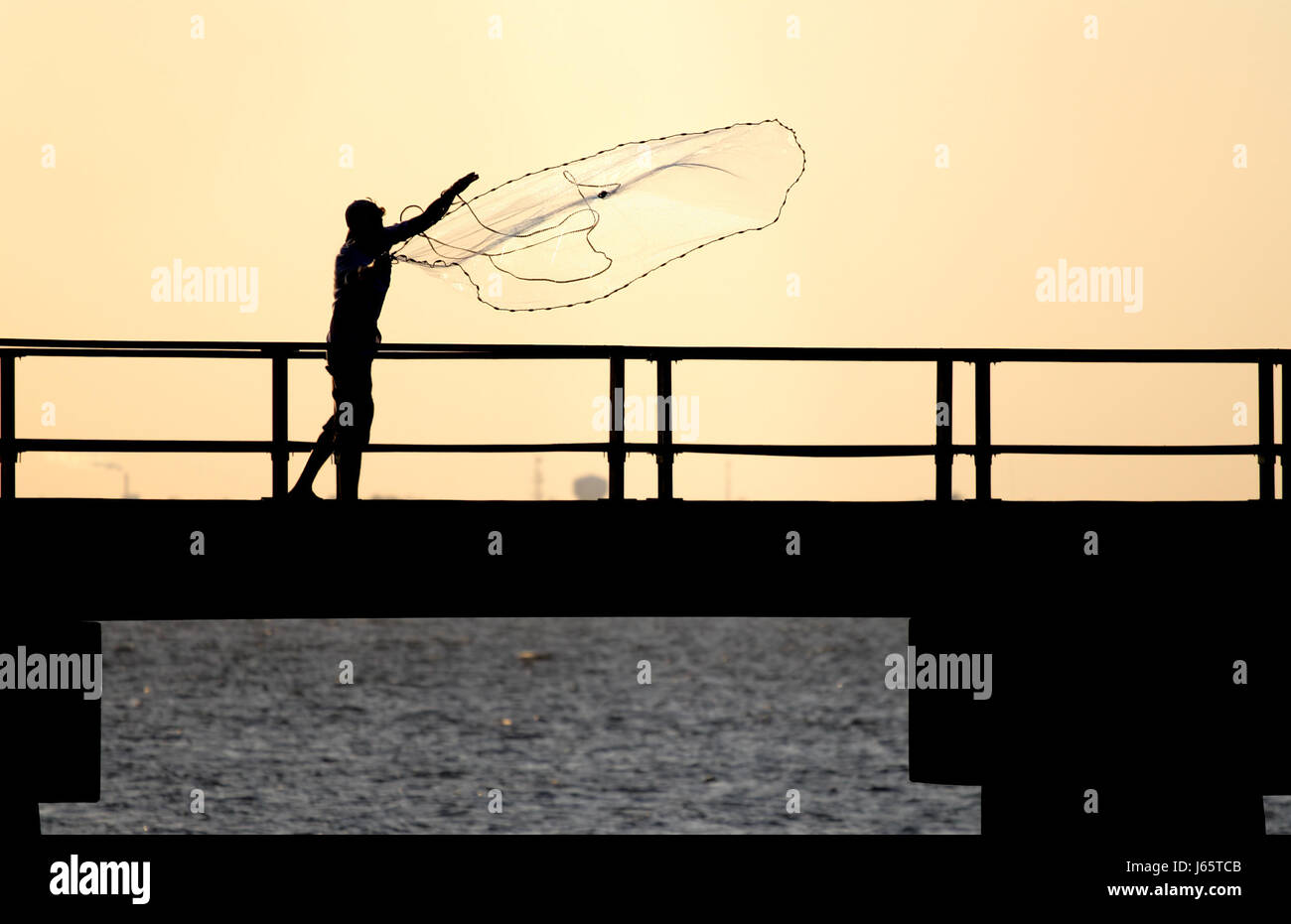 Fish Toss Stock Photos & Fish Toss Stock Images