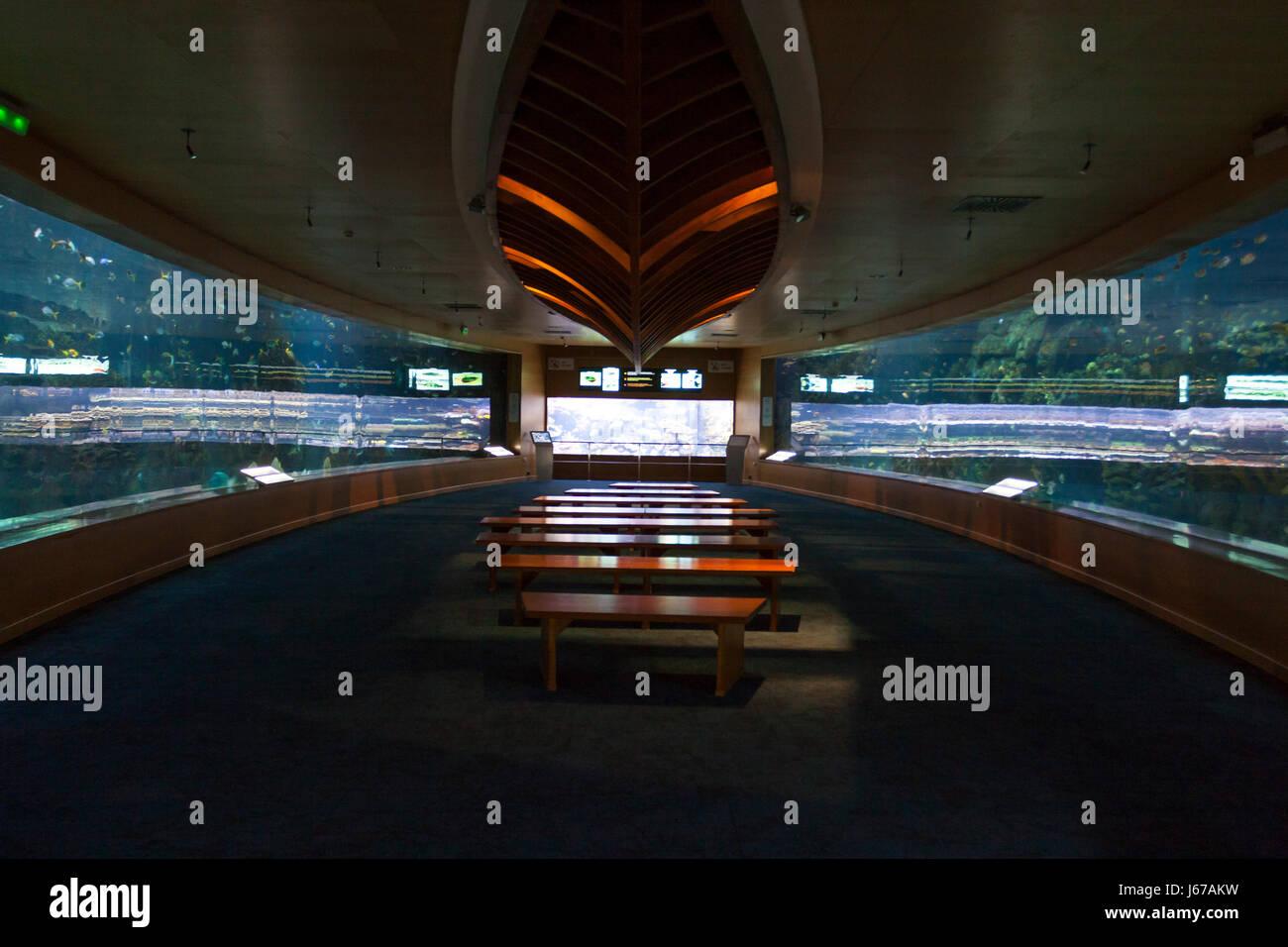 Spain comunidad autonoma de valencia stock photos spain for Aquarium valencia bar