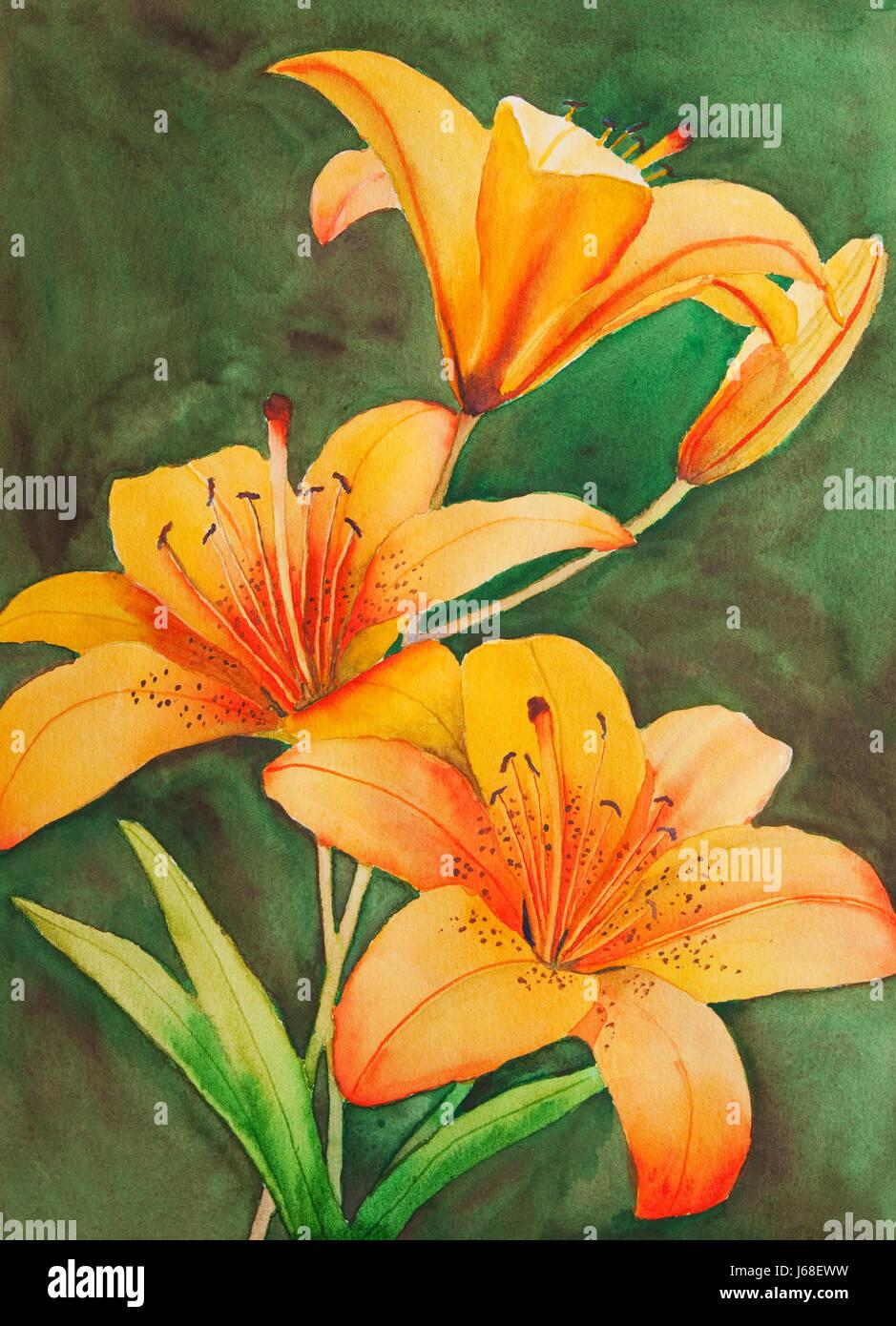Art Flower Plant Painting Lily Orange Watercolor Dyer Staint Pigment