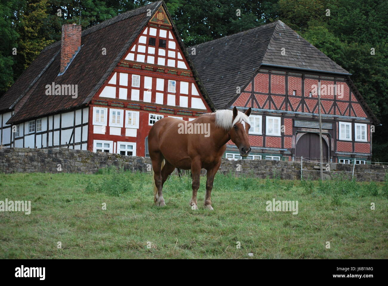 house building horse wood strong horses pull old ride horse wood ...
