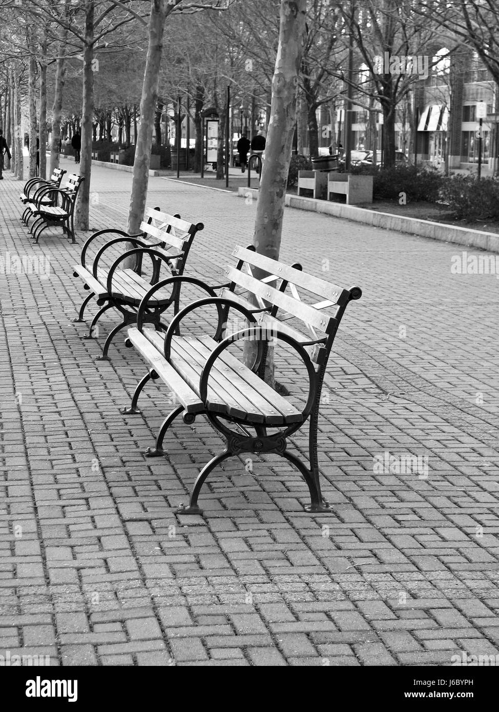 bench outside. park benches outside quiet empty seat bench path way outdoor