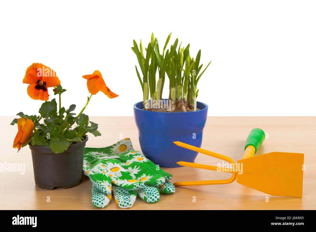 Gartenhandschuhe Stock Photos Amp Gartenhandschuhe Stock