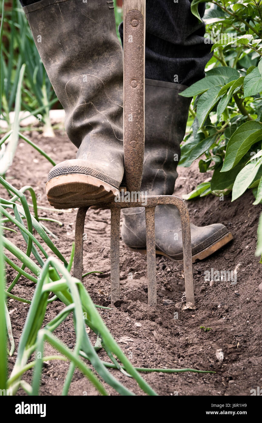 Digging tool stock photos digging tool stock images alamy for Agriculture garden tools